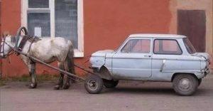 Лошадка тащит машинку