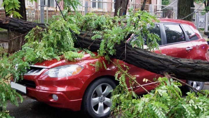 Что делать, если на машину упало дерево или сосулька